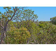 Gingin Western Australia Photographic Print