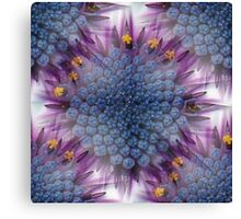Stunning African Daisy Tropical Flower Macro Seamless Image Canvas Print