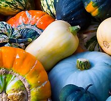 Pumpkins Gourds and Squash by MarkUK97