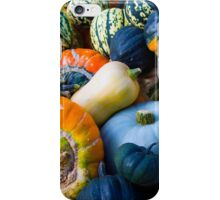 Pumpkins Gourds and Squash iPhone Case/Skin