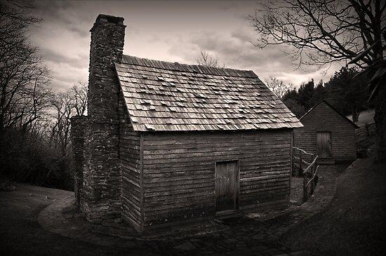 Brinegar Cabin by Patricia Montgomery