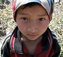 young girl. himalayas, nepal by tim buckley | bodhiimages