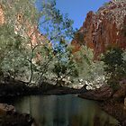 Midday light, Whistleduck Gorge. by Richard  Stanley
