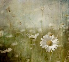 The days that sing .... by Dominic Moriarty