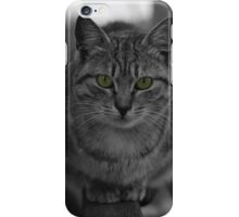 Smelly cat iPhone Case/Skin