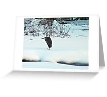 Brrrrr- it's so cold. Greeting Card