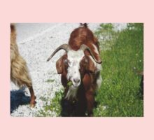 Whimsical Portrait of a Horned Goat Grazing Kids Clothes
