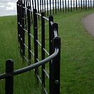 Winding Fence by LydiaBlonde