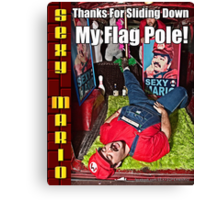 SexyMario MEME - Thanks For Sliding Down My Flag Pole 1 Canvas Print