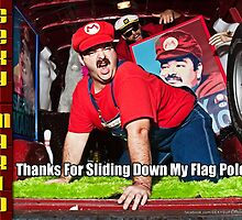 SexyMario MEME - Thanks For Sliding Down My Flag Pole 2 by SexyMario