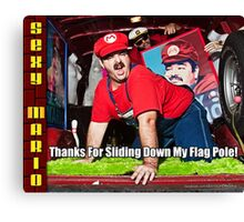 SexyMario MEME - Thanks For Sliding Down My Flag Pole 2 Canvas Print
