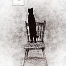 picture purrrrfect  by Amanda  Cass