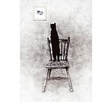 picture purrrrfect  Photographic Print