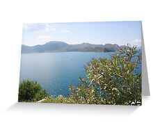 Oleander Againt The Aegean near Selimiye Greeting Card