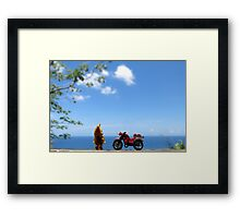 A View Framed Print