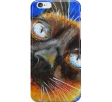 Cat Diane iPhone Case/Skin
