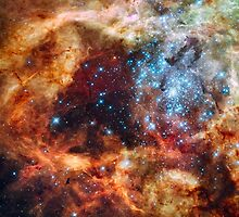 Tarantula Nebula by FantasyDesign