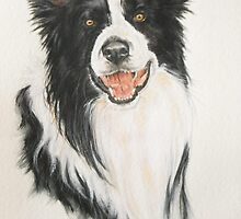 Border Collie by BarbBarcikKeith