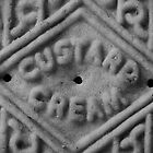 Up close with a Custard Cream by jammysam1680