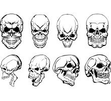 Different Skulls Photographic Print