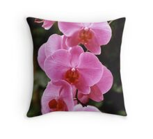 In Honor of Mrs. Beverly Iseberg Throw Pillow