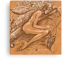 Sleeping Fairy Canvas Print