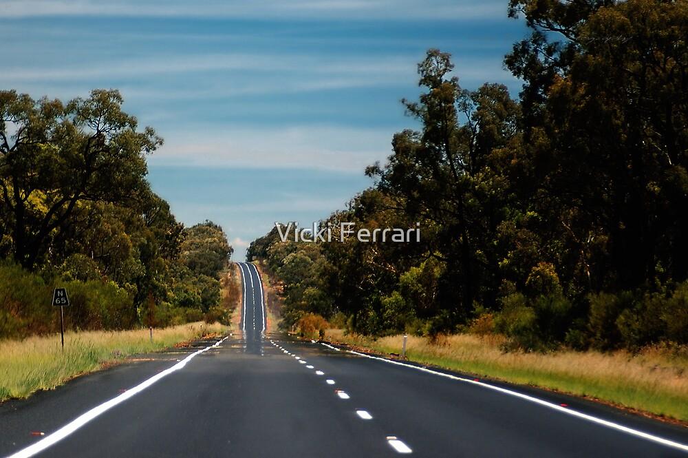 Road to Narrabri © by Vicki Ferrari