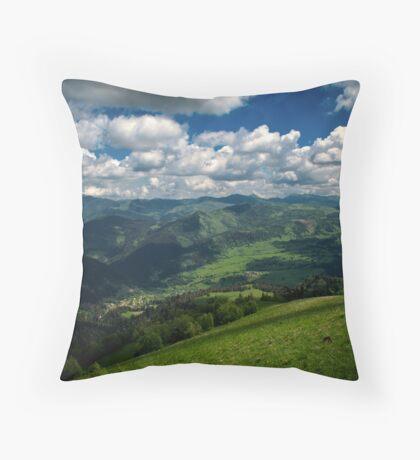 Mountain world Throw Pillow