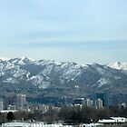 Salt Lake City Utah by CynLynn