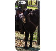 U.S. Cavalry Horse in Texas iPhone Case/Skin