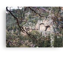 Wisteria Buds Surrounding the Lycian Tombs Dalyan Canvas Print