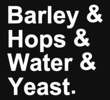 Barley Hops Water Yeast by Pitharded