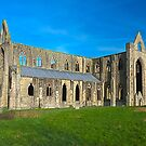 Tintern Abbey, Monmouthshire, Wales by GrahamCSmith