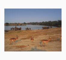 Elephants and Impala, Botswana Kids Clothes