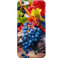 Fruit of Napa Valley I iPhone Case/Skin