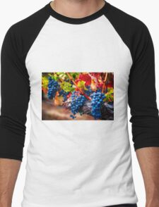Fruit of Napa Valley I Men's Baseball ¾ T-Shirt