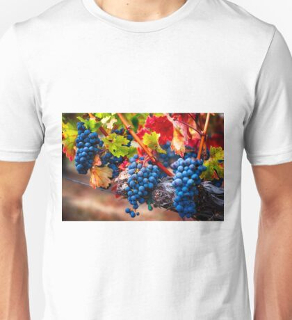 Fruit of Napa Valley I Unisex T-Shirt