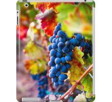 Fruit of Napa Valley II iPad Case/Skin