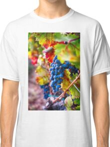 Fruit of Napa Valley II Classic T-Shirt