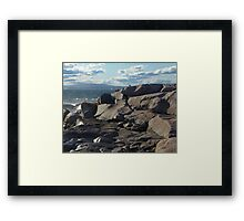 Sharing The Solitude Framed Print