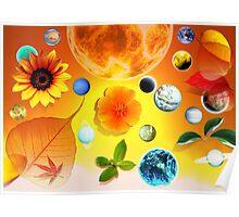 Plantes & Planetes Poster