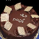 Passover Cake by tali