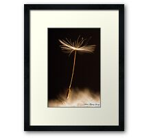 Silent Flying Away Framed Print