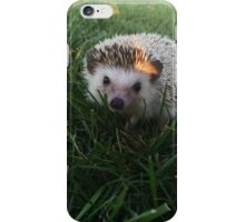 Loki the Hedgehog  iPhone Case/Skin