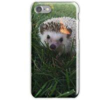 Loki the Hedgehog  iPhone Case/Skin