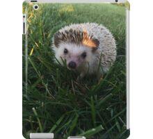 Loki the Hedgehog  iPad Case/Skin