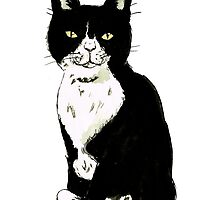 Black and white cat drawing by GemmaCorney