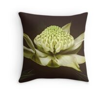 White waratah (Telopea speciosissima cv) Throw Pillow