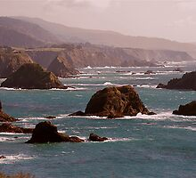 Mendocino Coast by Cheryl  Lunde