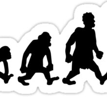 karate  taekwondo evolution darwin Sticker